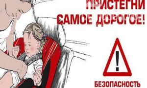 «Сотрудники Госавтоинспекции Чановского района провели акцию - Пристегни самое дорогое»